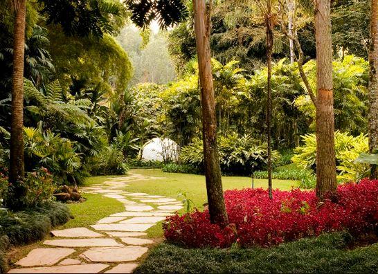 Paisagismo e Jardim